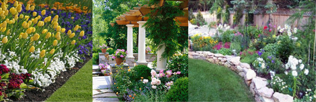 Tampa landscape design services tampa landscape designers for Landscape design tampa